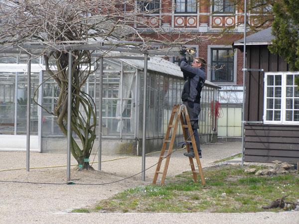 Montage i Botanisk Have i KBH